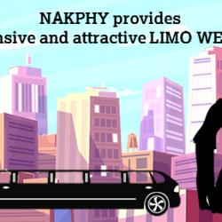 Limo Website Design development